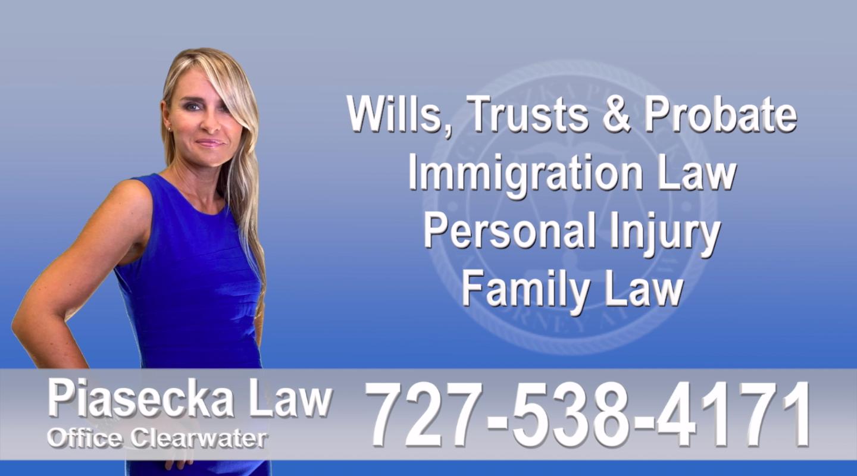 Immigration, Florida, Polish, Attorney, Lawyer, Polski, Prawnik, Adwokat, Floryda, USA, Agnieszka Piasecka, Aga Piasecka, Piasecka copy